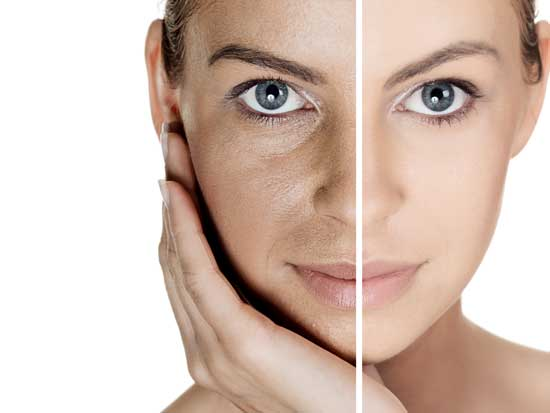 The anatomy behind aging skin | Live Ultra Healthy
